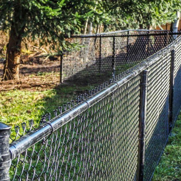 San Francisco-fence--